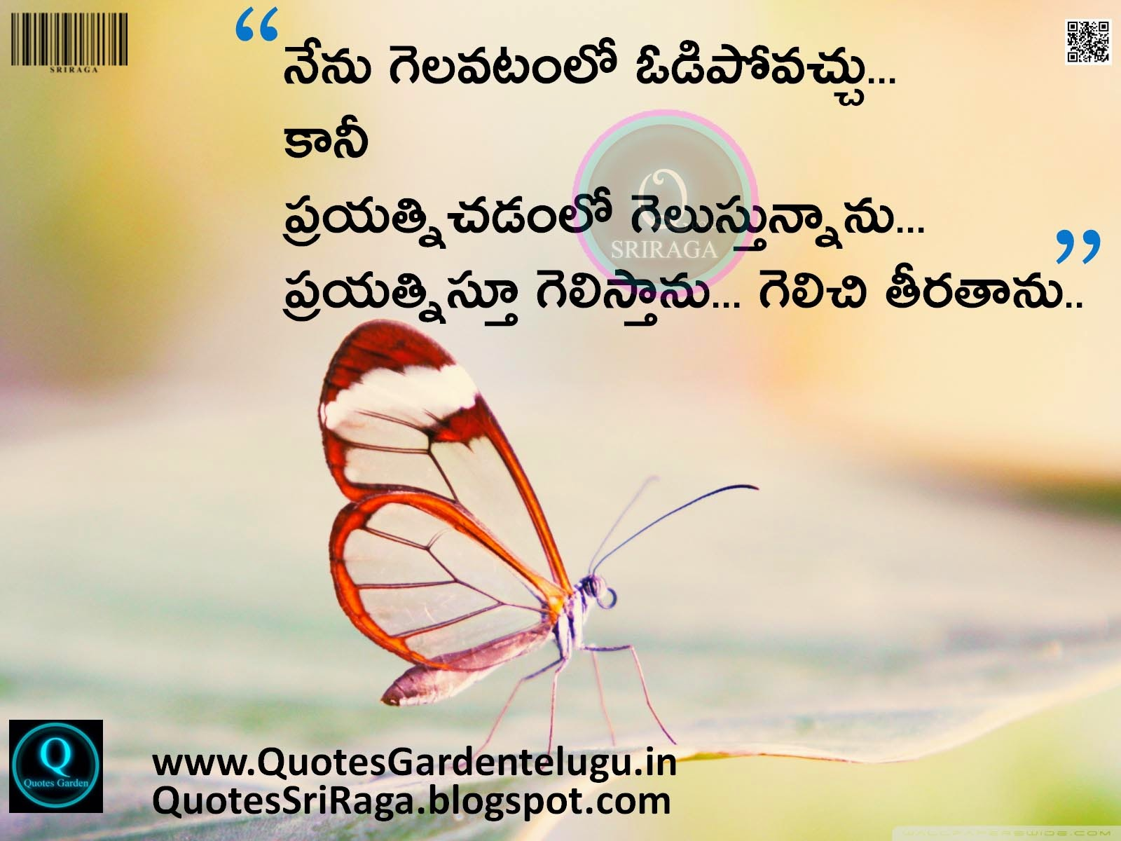 Group Of Best Telugu Life Quotes