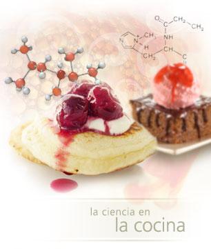 Comidas con historias cocina molecular for Espumas gastronomia molecular