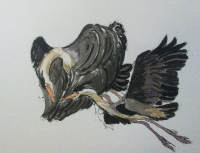 garzas volando con tinta y acuarela