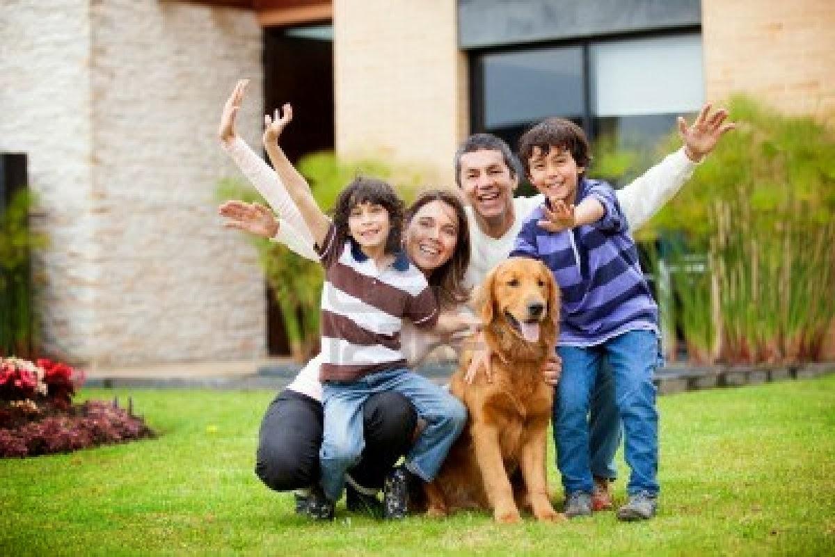 Club agility la daga lleida la eleccion del cachorro empezando bien una historia - Casas para familias numerosas ...