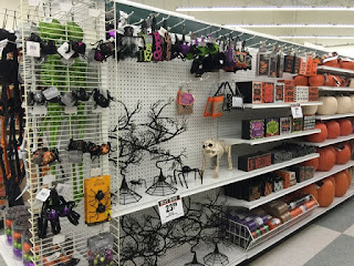 http://www.halloweenforum.com/general-halloween/140619-2015-halloween-mdse-sighting-stores-19.html
