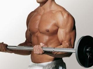 Ejercicios para Aumentar el Tamaño de los Bíceps