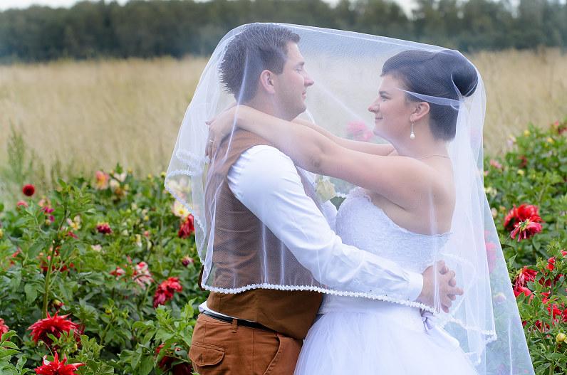 vestuvės rugpjūty