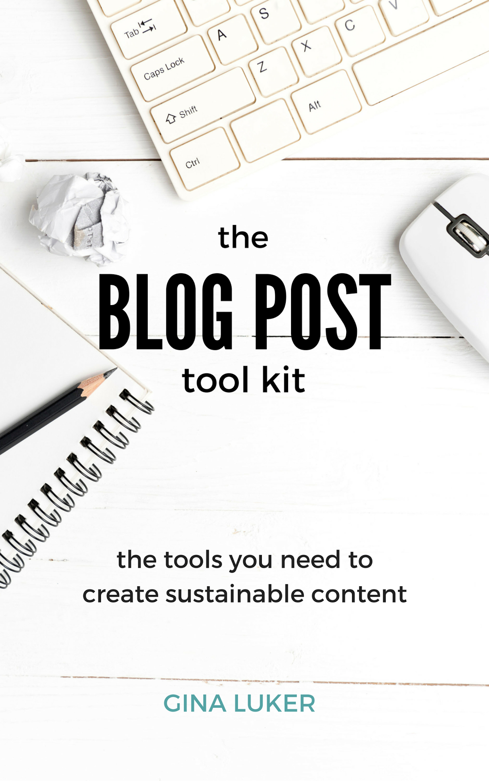 This is the Blog Tool Kit that I purchased from Gina Luker.