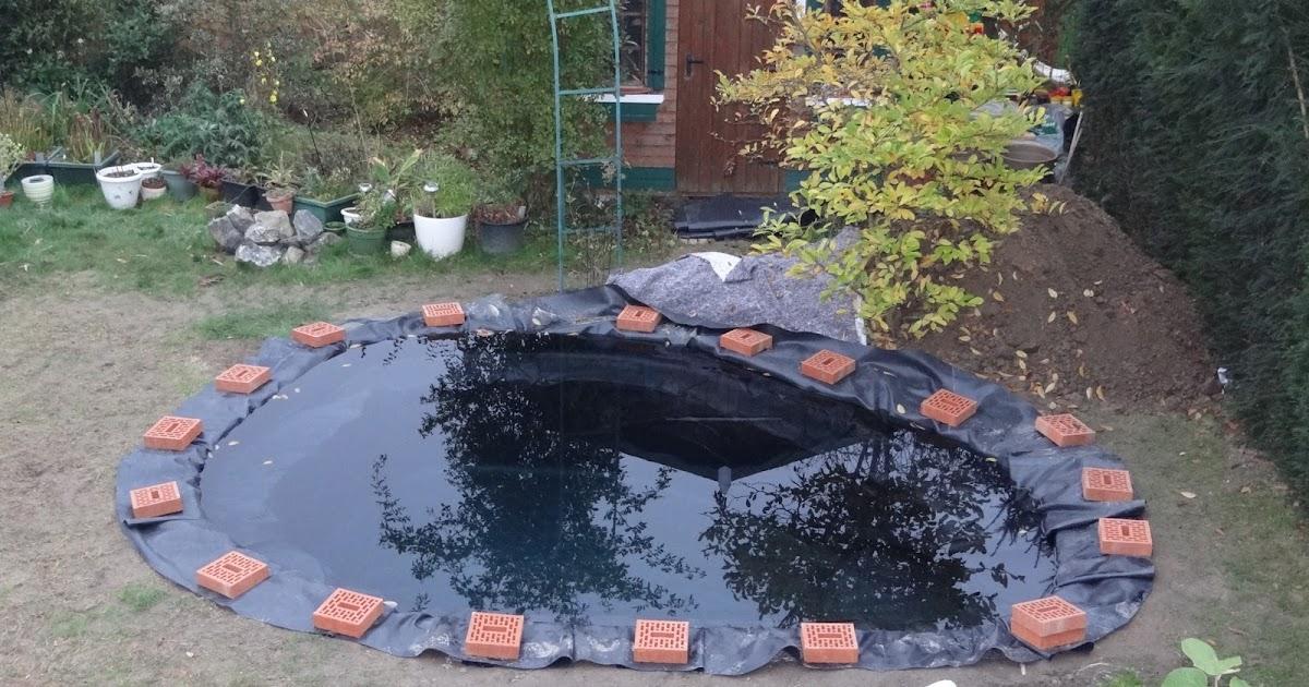 Bassin suite for Elever des carpes