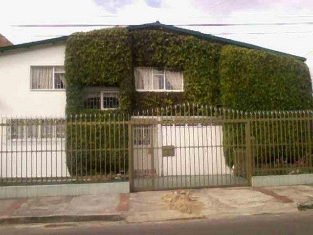 Casa con flora en sentido vertical