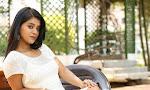 Yamini Bhaskar New Glam pix-thumbnail
