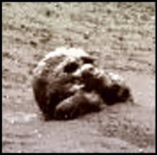 Extrañas fotografías de Marte - cráneos de apariencia humana