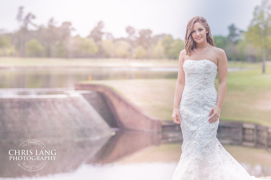 image of bride posing for bridal picture - ideas for brides - wedding dress - wedding photography