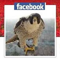 Nasza strona na FB