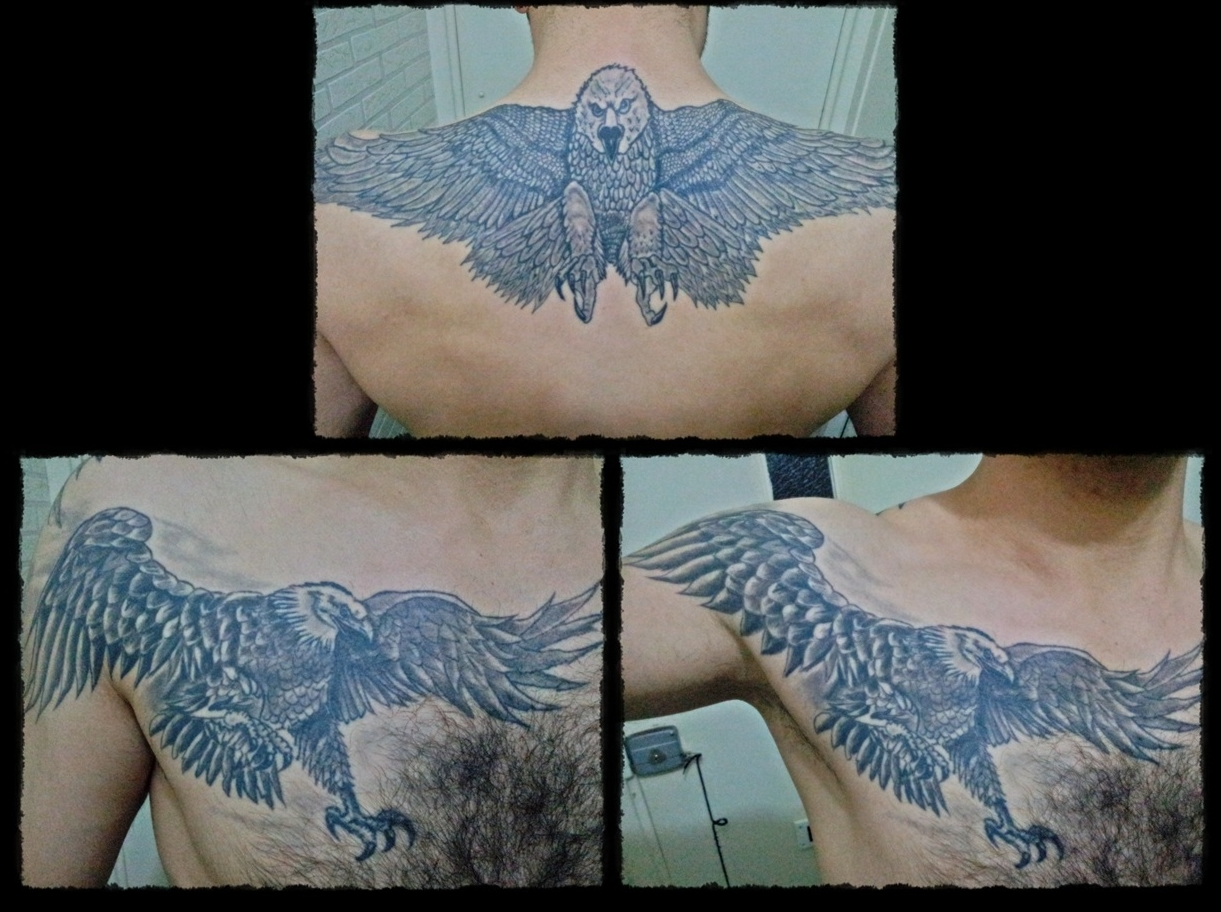 adler tattoo eagle tattoo tattoo brust tattoo chest tattoo. Black Bedroom Furniture Sets. Home Design Ideas