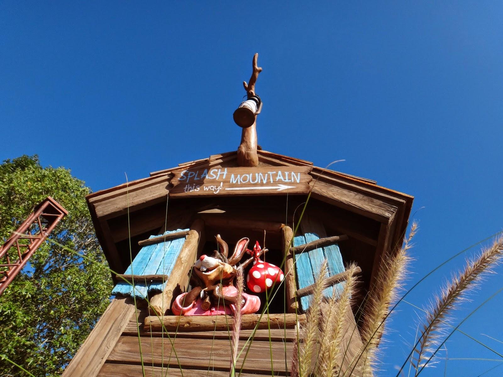 Walt Disney World Tourist Frontierland Magic Kingdom