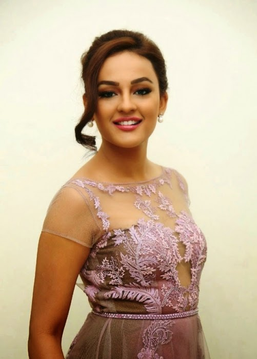 Seerat Kapoor Latest Pictures
