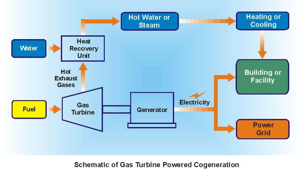 Natural Gas Cogeneration For Homes