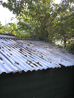 Old plastic roof