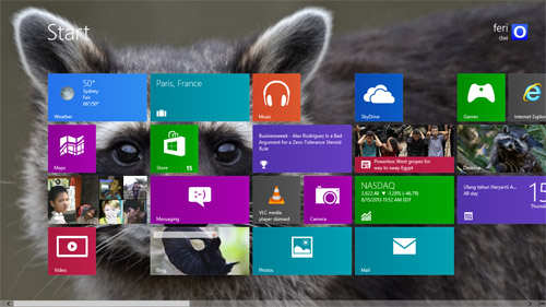 Raccoon Theme For Windows 7 And 8