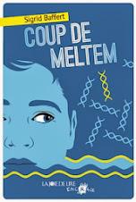 COUP DE MELTEM