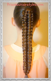 Recent Favorite Hairstyle Tutorial - Twisted Edge Fishtail Braid