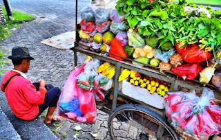 peluang usaha jualan sayur