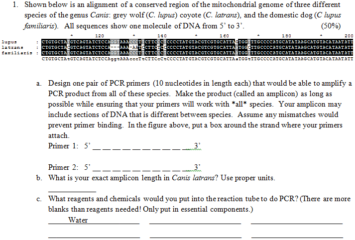 Basic Genetics for University DNA Technology – Dna Technology Worksheet