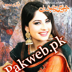 Khawateen Digest february 2014 free download, read online