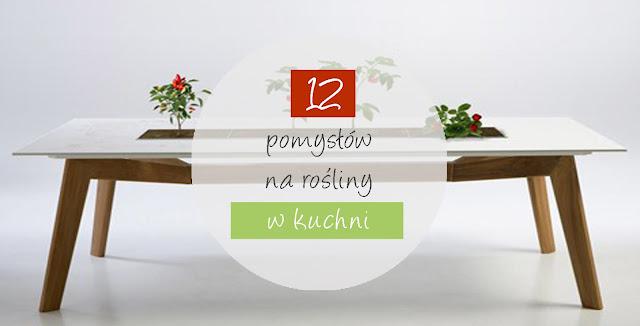 12 pomysłów na rośliny w kuchni