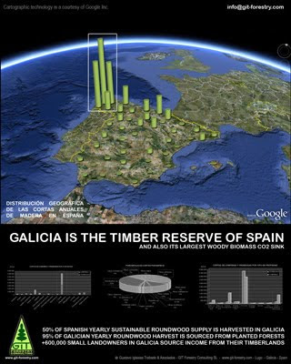 Galicia, Timber Reserve of Spain, Sustainable Source of Wood Products from Eucalypt and Pine Planted Forests produces 50% of Spanish yearly timber harvests / Galicia, la Reserva Forestal de España, es fuente sostenible de recursos madereros a partir de bosques cultivados de pino y eucalipto que generan el 50% de la produccion de madera española / Galiza, a madeira da Reserva da Espanha, fonte sustentável de produtos de madeira de eucalipto plantadas florestas de pinheiros e produz 50% dos espanhóis colheita de madeira por ano / Galizien, Timber Reserve von Spanien, nachhaltige Quelle von Holzprodukten aus Eukalyptus und Kiefer gepflanzte Wälder produziert 50% der spanischen jährlichen Ernten Holz / Galice, du bois de réserve de l'Espagne, source durable de produits de bois d'eucalyptus et de pin forêts plantées produit 50% de bois par an en espagnol récoltes / 加利西亚,木材储备西班牙,可持续来源的木材产品从桉树和松树人工林生产木材50%的西班牙每年的收成 / ガリシアは、スペインの木材保護区、ユーカリ、パイン植林からの木材製品の持続可能なソーススペイン年間木材の収穫の50%を生産している / Gustavo Iglesias Trabado, Roberto Carballeira Tenreiro & Javier Folgueira Lozano / GIT Forestry Consulting SL, Consultoría y Servicios de Ingeniería Agroforestal, Galicia, España, Spain / Eucalyptologics, information resources on Eucalyptus cultivation around the world / Eucalyptologics, recursos de informacion sobre el cultivo del eucalipto en el mundo