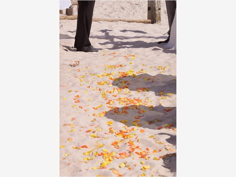 DK Photography LASTBLOG-042 Stefanie & Kut's Wedding on Dolphin Beach, Blouberg  Cape Town Wedding photographer