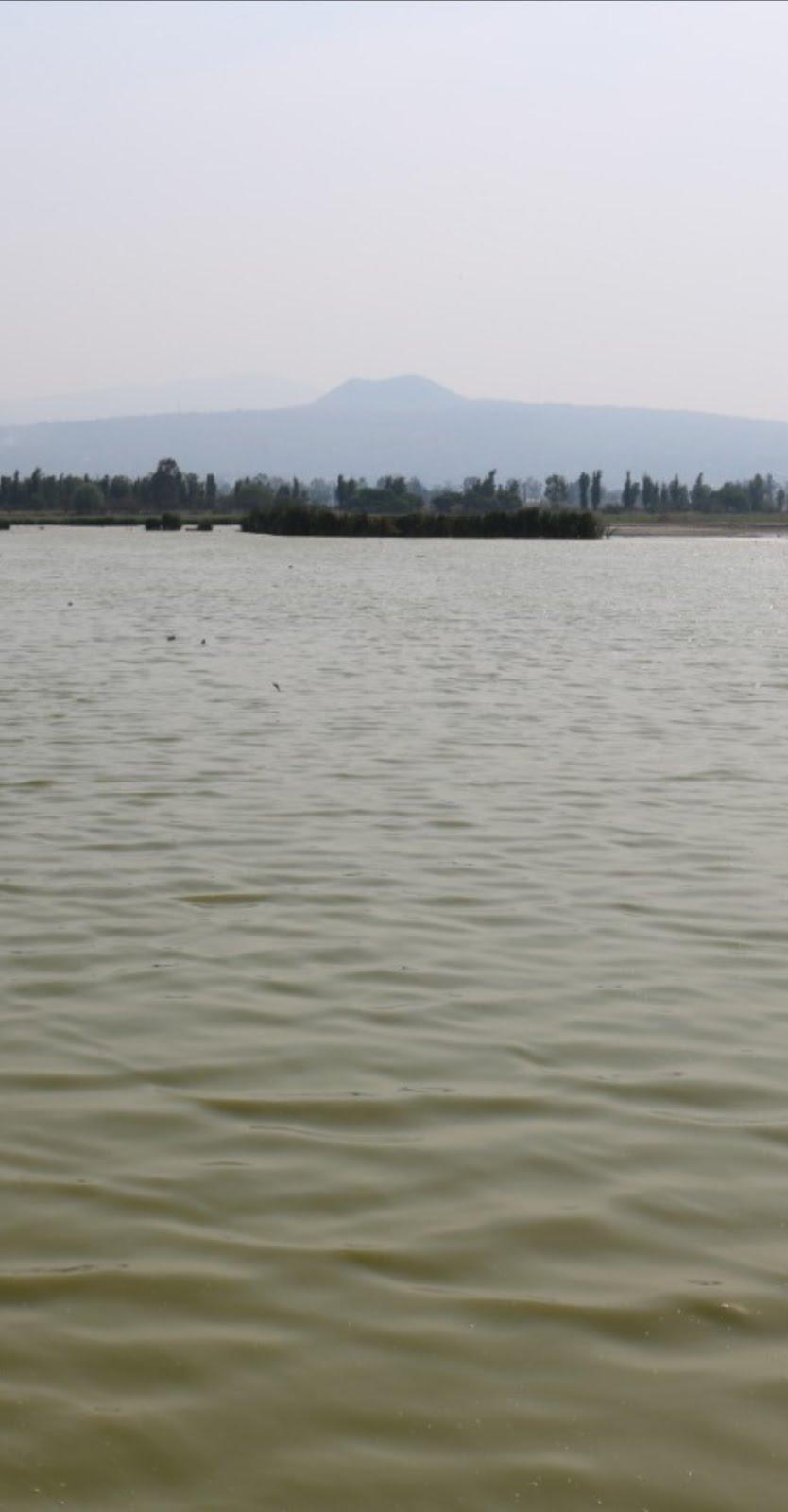 Humedales de Tláhuac-Xico contienen la mancha urbana