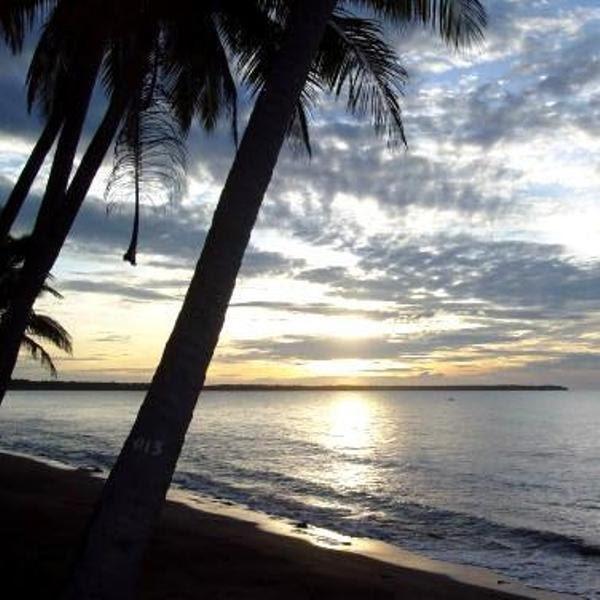 Beach Property Narra Palawan Buy Philippine Homes