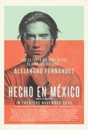 Download Hecho En Mexico (2012) Dvdrip