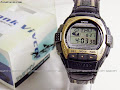 Casio Vivcel