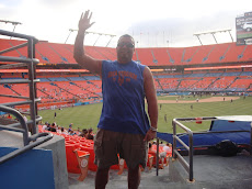 Sun Life Stadium- Miami, Florida (2010)