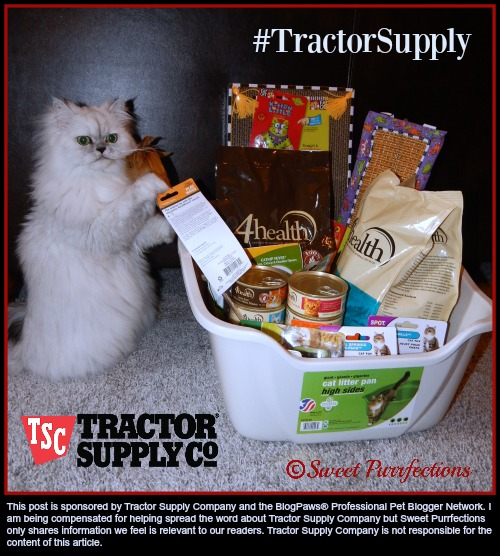 Truffle and Gift Basket from #TractorSupply