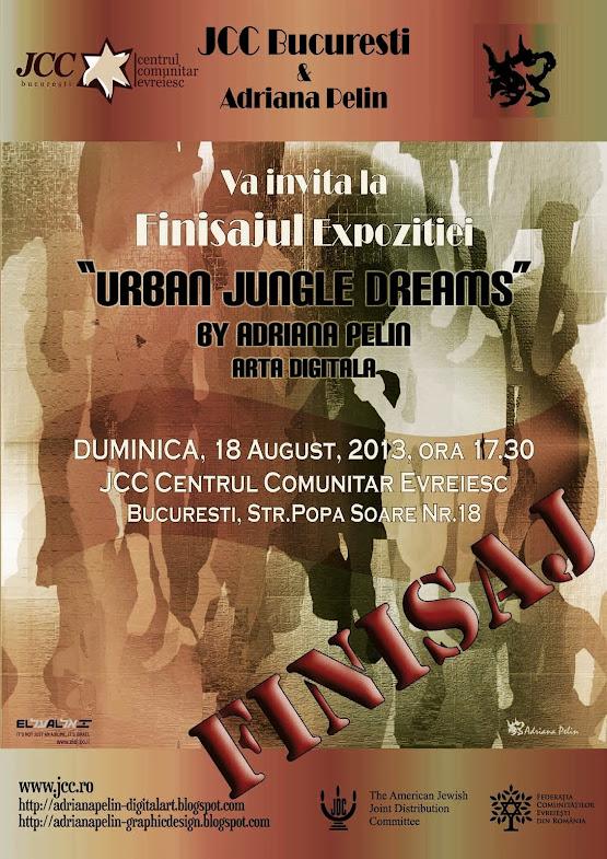 FINISAJ Expozitie, 18 August 2013, 17.30 hrs @JCC