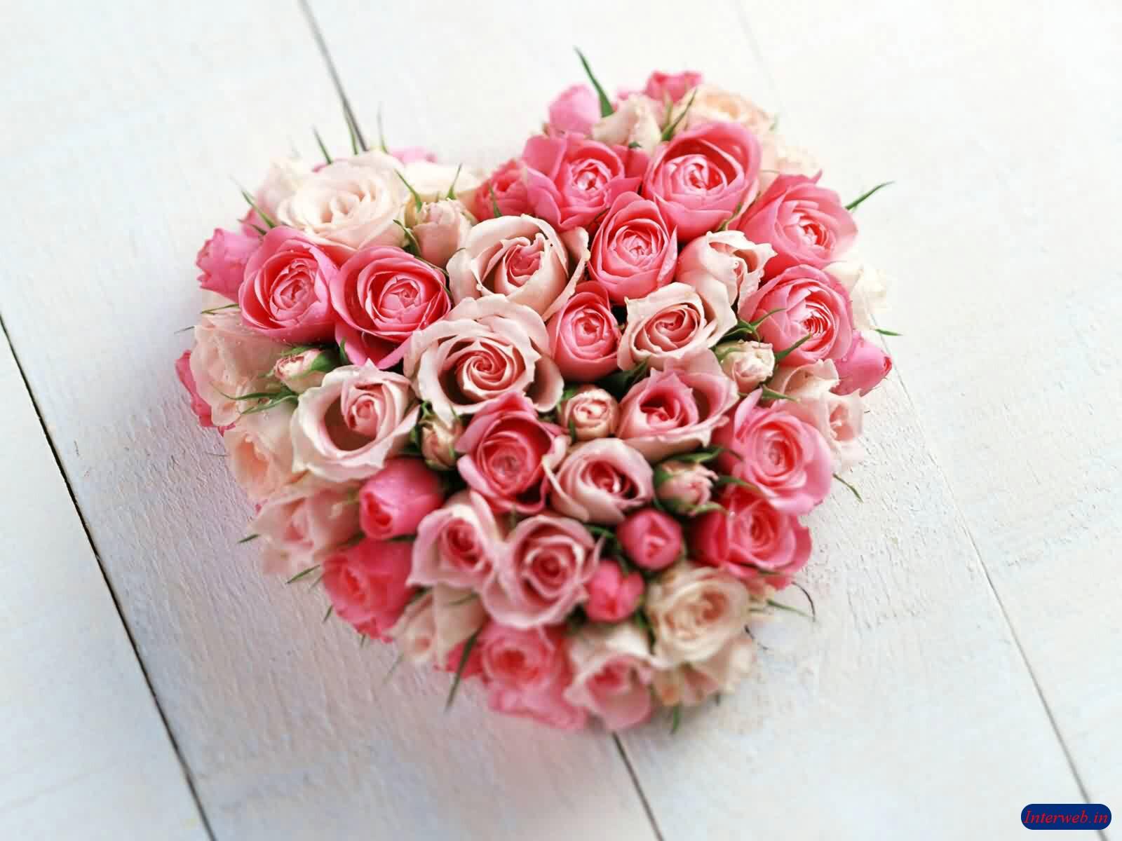 http://4.bp.blogspot.com/-875IMRd9tU8/TXrs7cTSAwI/AAAAAAAAAno/uj_vf2MybRg/s1600/flower%2Bfor%2Byour%2Blove%2Bone.JPG