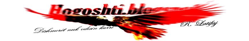 hogoshti.blogspot.com