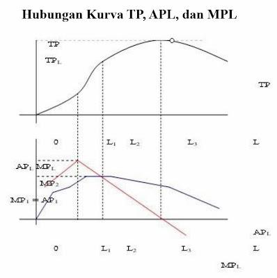 Hubungan Kurva TP, APL, dan MP