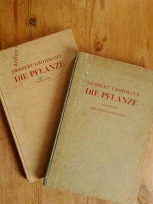 Grohmann, Gerbert: Die Pflanze : Ein Weg zum Verständnis ihres Wesens