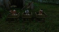 ArcheAge Ездовая лошадь