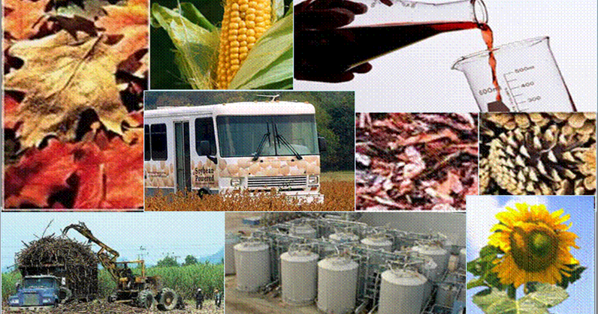 Ventajas de los biocombustibles calderas y calefacci n - Fontaneros en pamplona ...