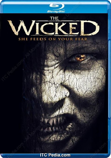 The Wicked (2013) m720p BluRay x264 - BiRD