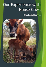 house cow ebook