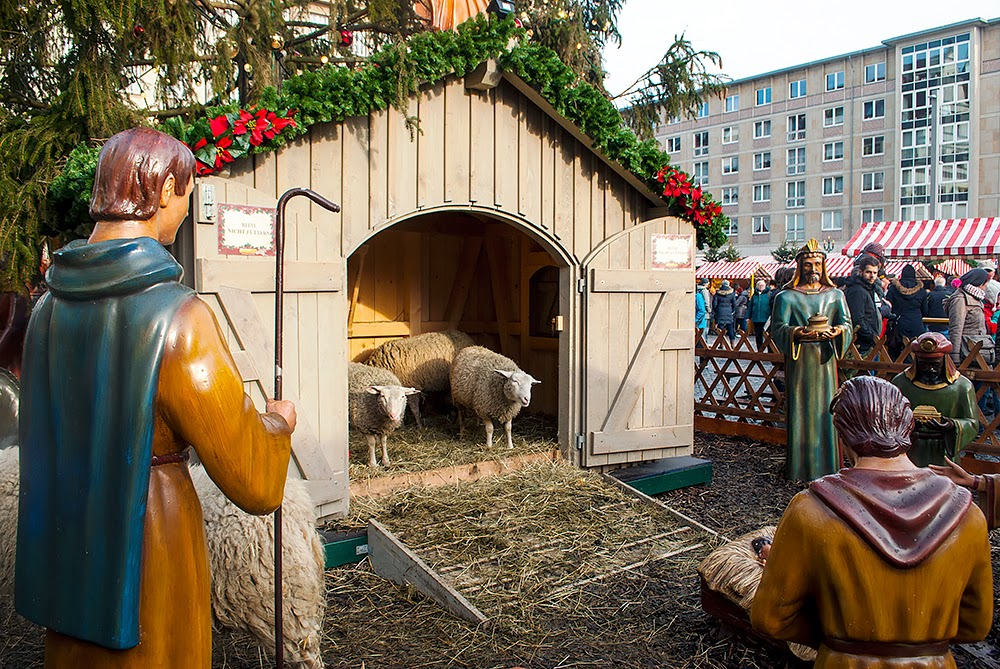 Live Sheeps in Leipzig