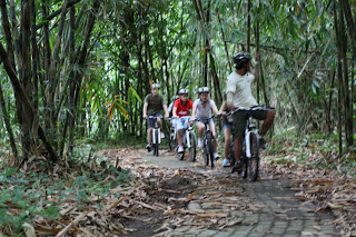 Bali Countryside Cycling Tour - bamboo forest cycling track