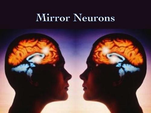 Compressa mente neuroni specchio il wi fi del 39 amore - Neuroni a specchio rizzolatti ...