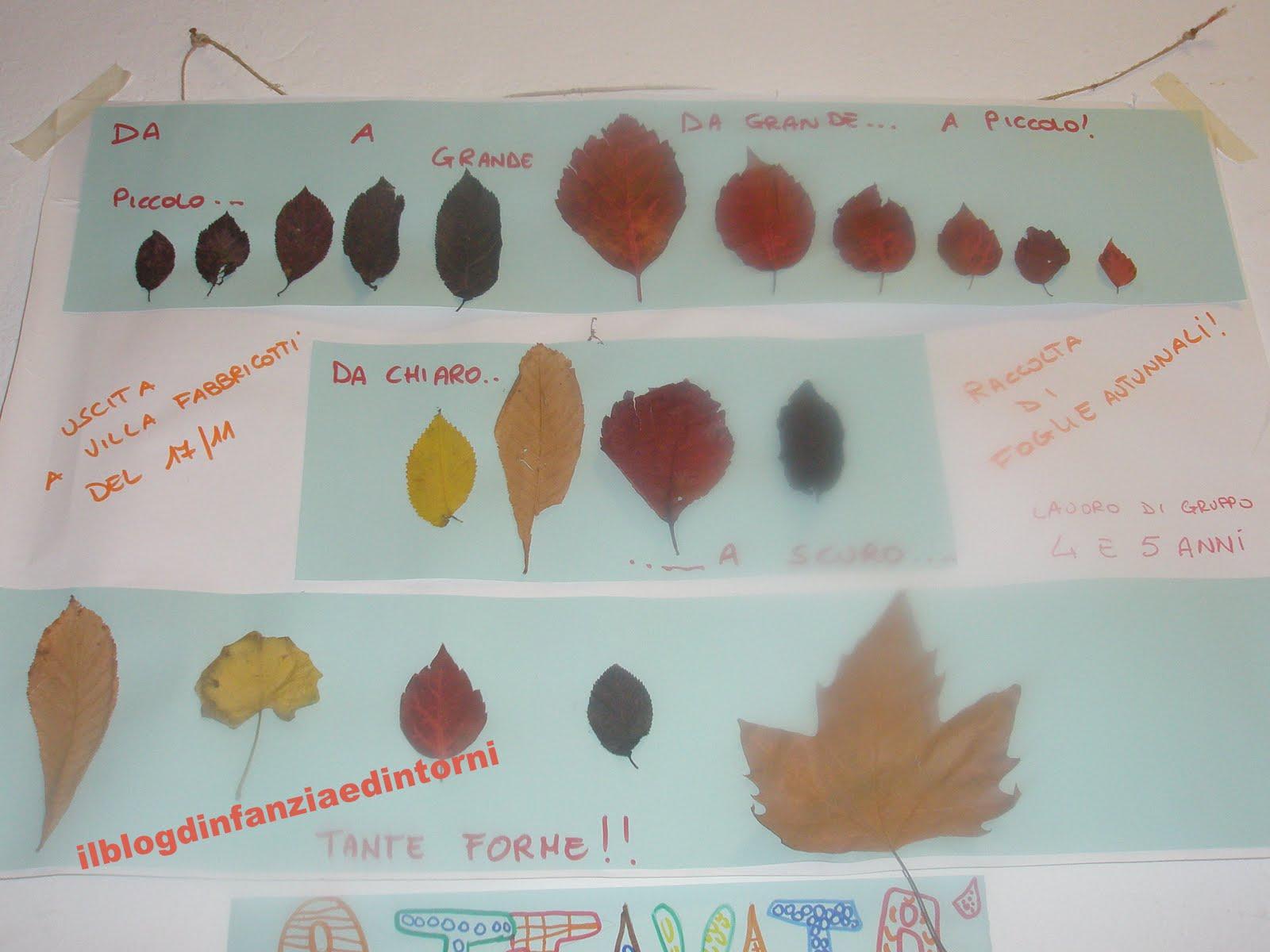 Eccezionale il blog d'infanzia e dintorni: Attività di autunno KT51