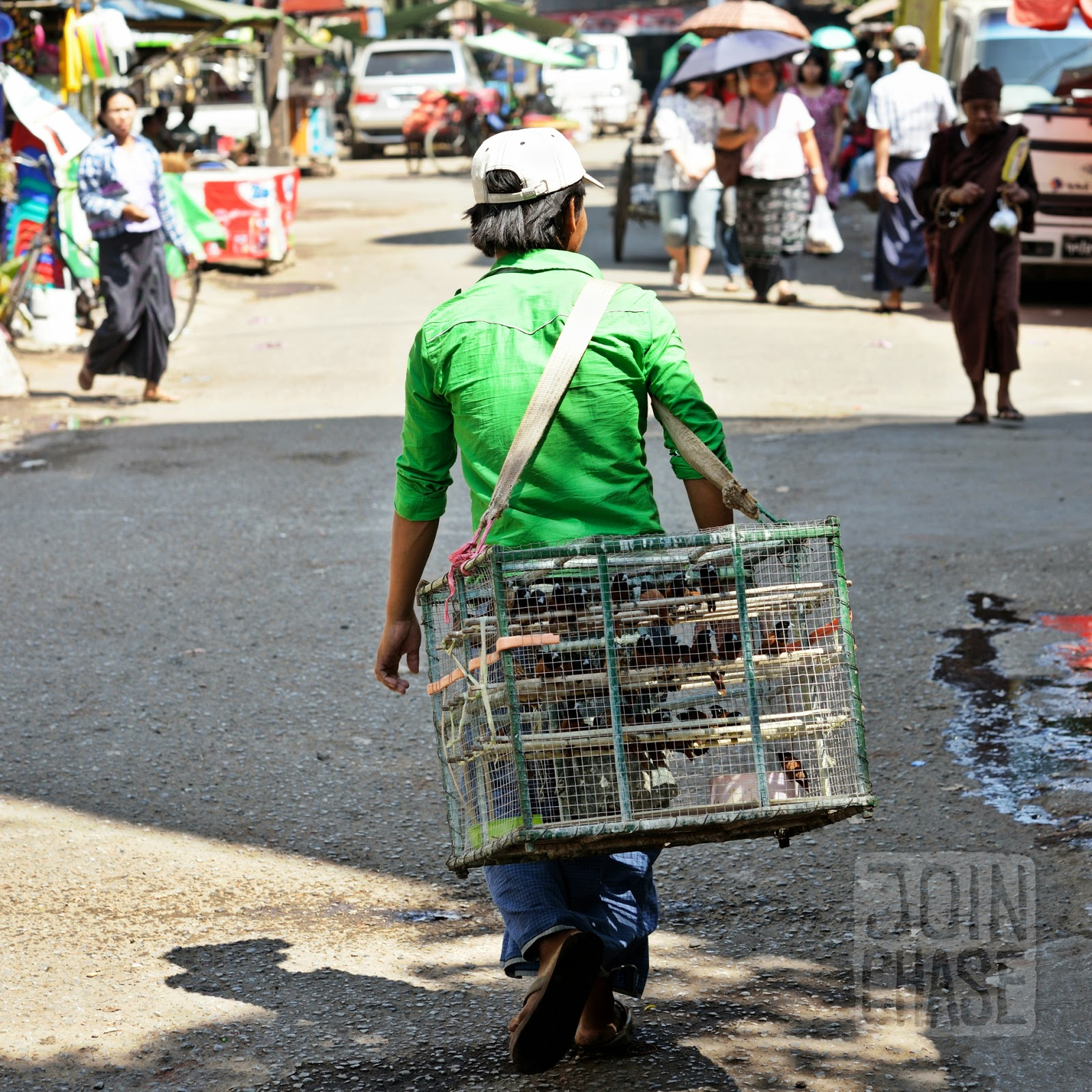 A man selling caged birds to set free in Yangon, Myanmar.
