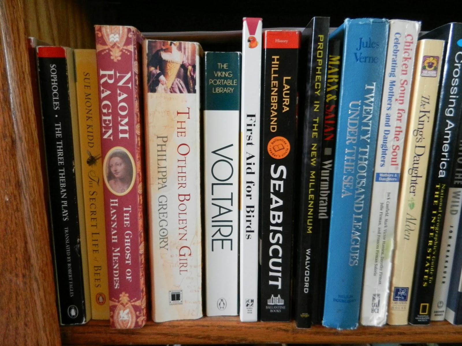 bookshelf pic