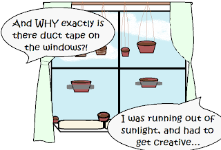 "Window with pots on the ledge, hanging from the curtain rod, and stuck to the glass with tape.  Statement bubbles: ""And WHY exactly is there duct tape on the windows?!"" ""I was running out of sunlight, and had to get creative..."""
